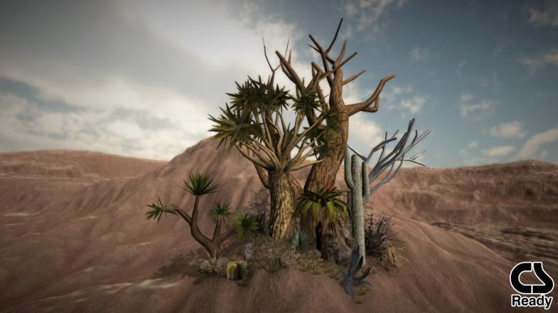 Desert_vol_veg.jpg